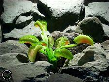 faux reptile terrarium plant: venus flytrap from ron beck designs. prp205