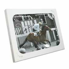 More details for willie carson signed horse racing photo: troy. in gift box