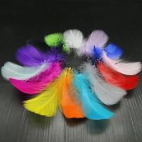 100pcs Wholesale Mix Color/Goose/Chicken Pheasant Feather DIY Wedding Decor