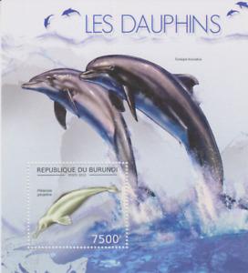 Dolphins Burundi Mint 3314