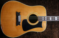 VERY RARE LATE 70s IBANEZ ARTIST STEEL STRING WESTERN GITARRE 2601 MADE IN JAPAN