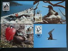 bird frigatebird WWF set of 4 maximum card Ascension Island 94706