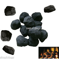 20 STANDARD CAST GAS FIRE REPLACEMENT COALS COAL OVAL CERAMIC NEW SELLER 60MM