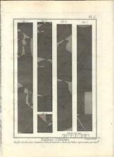 Stampa antica SARTORIA ABITI Pl 5 Enciclopedia Diderot 1786 Old antique print