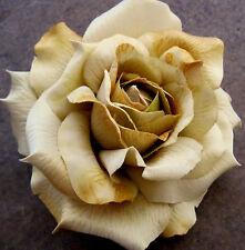 "Large 5"" Golden Tan Rose Silk Flower Hair Clip, Wedding, Prom, Dance, Prom"