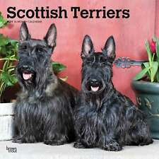 Scottish Terriers Calendar 2021