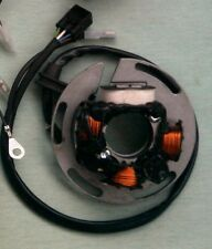 Sherco 250/290 2001- 2013 ignition stator rewind/repair services.