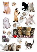 9 ADESIVI AUTO TUNING GATTINI GATTI KITTENS STICKERS