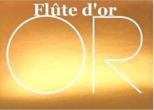 Flûte traversière  OR Briliant non allergique Flauta Traversa ORO brilliante FRA
