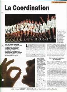 Fascículo Nuestra Monde - El Cuerpo Humano - La Coordinación