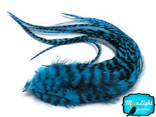 6 Pieces - TURQUOISE BLUE Thick Long Grizzly Rooster Hair Feathers