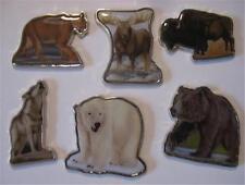 Great Animals of North America 2008 Somalia 6 Coin Set
