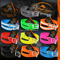 SportDOG Replacement Dog Collar Strap -11 Colors 3/4-inch wide