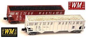 Full Throttle Z Scale Western Marlyand 100' Pennzee Collector Pack