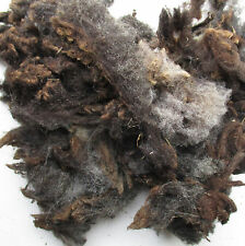 Black Ryeland Raw Unwashed Wool 200g