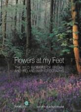 Flowers at My Feet: The Wild Flowers of Britain and Ireland in Photographs By B