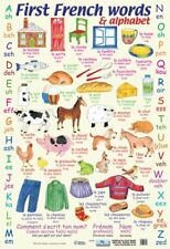 More details for french words poster alphabet 40x60cm