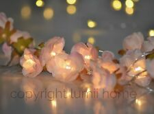 Pink rose flower battery 20 LED string mothers day present warm white wedding