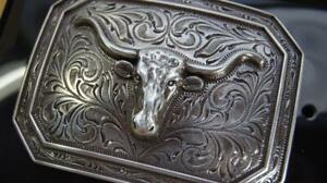 Ariat Western Rectangle Smooth Edge Longhorn Silver Belt Buckle A37008