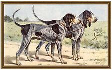 Le chien bleu de Gascogne haushund Basset Mahler 34 toile montures
