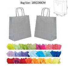 10 Silver Paper Gift Bags With Tissue Paper - Recyclable Twist Handle Party Bag