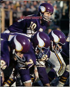 NFL 1961 Fran Tarkenton Minnesota Vikings Game Action Color 8 X 10 Photo Pic