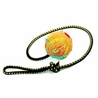 Dingo Rubber Fetch Ball with Bell and Rope, Medium, 60 cm