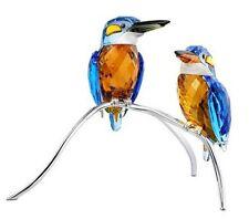 Swarovski Kingfishers Turquoise Birds  Figurine No.5155669-P NIB LAST ONE!
