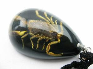 lots 8pcs natuer golden scorpion fine gift to friend scorpion black pendants