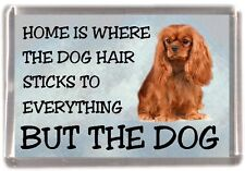 "Cavalier King Charles Dog Fridge Magnet ""Home is Where"" Design No 1 by Starprint"