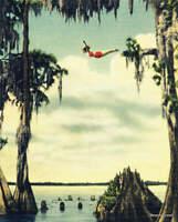 Vintage Woman Girl Diving at Cypress Gardens, Old Florida Art Beach House Decor