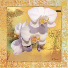 Wand Bild Motiv Riweda Blumen Orchidee Digitale Kunst Weiß 62,4x62,4x1,6 cm A7TA