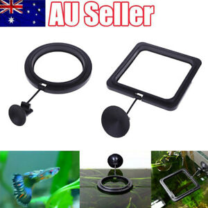 Aquarium Fish Feeding Ring Fish Tank Floating Food Feeder With Suction Cup