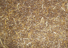 50/50 Straw and Horse Manure Compost Mushroom Substrate