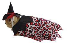Marshall Ferret Toy Dog Fashion Witch Hat Jacket Costume - Witch