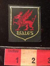 Woven Kinda Like Patch / Kinda Like A Label (see back) WALES United Kingdom 60C2