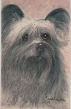 Postcard: Cute Skye Terrier Dog With Sweet Eyes, Fluffy Ears Artist Signed N09