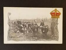 Mint Canada Ox Train Real Picture Photograph Souvenir Postcard