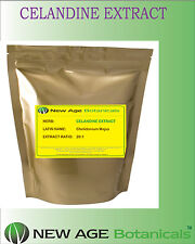 Celandine Extract Powder - [20:1] - 1kg