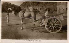 Aden - Native Camel Cart - Ethnography c1920s Real Photo Postcard