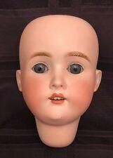 Antique German Bisque Doll Head w/ Sleep Eyes - Pansy
