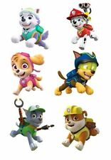 Paw Patrol Action Iron on Transfers
