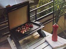 BRAND NEW Rinnai Portable Grill BBQ