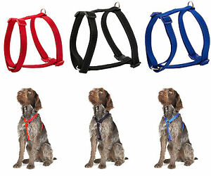 Ancol Nylon Dog Puppy Reflective Exercise Harness - Red Blue Black