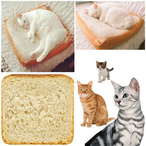 Toast Cushion Soft Pillow Sleeping Cotton Simulation Bread Slices Cat Plush Toy