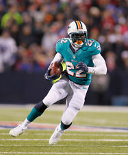 REGGIE BUSH 8X10 PHOTO MIAMI DOLPHINS PICTURE NFL FOOTBALL CLOSE UP ACTION