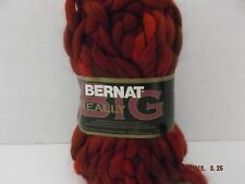 Bernat Really Big Super Bulky Yarn ~ Colour Grand Canyon 80 grams/2.8 oz ~