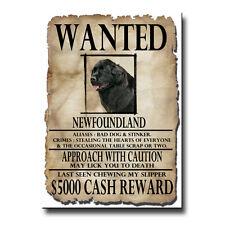 Newfoundland Wanted Poster Fridge Magnet No 2 Black Dog