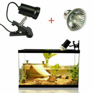 NEW 50W Tortoise Curved light UVA+UVB heating lamp Light Holder+Lamp 3.0