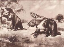 Prehistoric huge N&S American  MEGATHERIUM Sepia Print By Z Burian 1963 VF 9x13